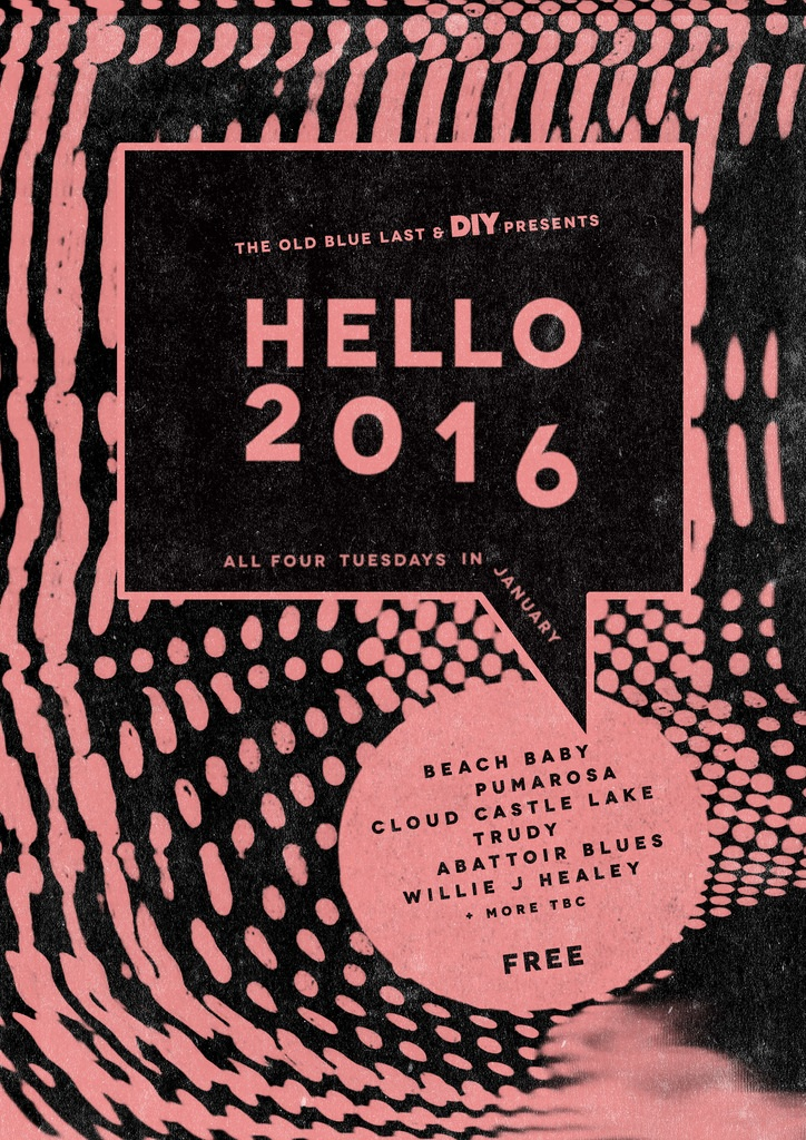 Beach Baby, Pumarosa, Willie J Healey to play DIY Presents' Hello 2016