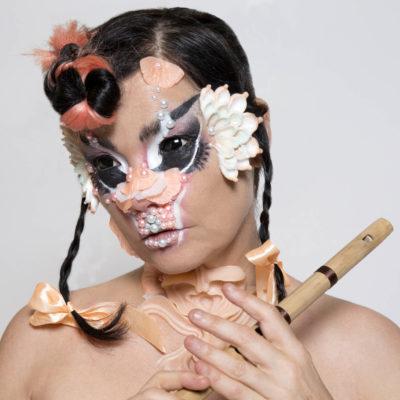 Björk, Metronomy and Groove Armada to headline bluedot 2020
