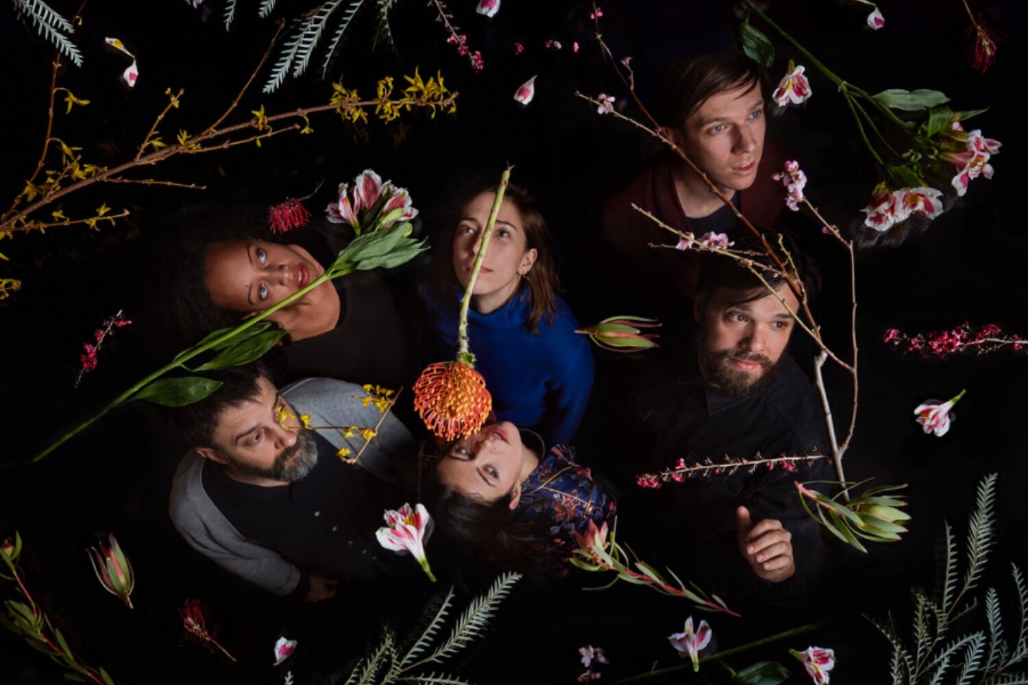 Dirty Projectors announce new album ft Haim, Rostam, Robin Pecknold (Fleet Foxes) and more