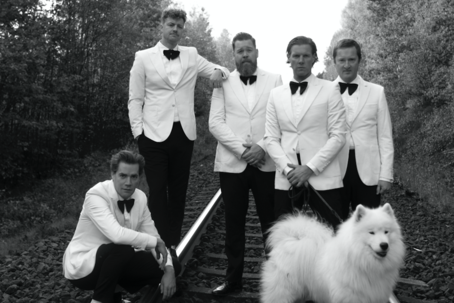 The Hives announce 'The World's First World Wide Web World Tour'