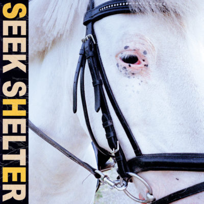 Iceage - Seek Shelter