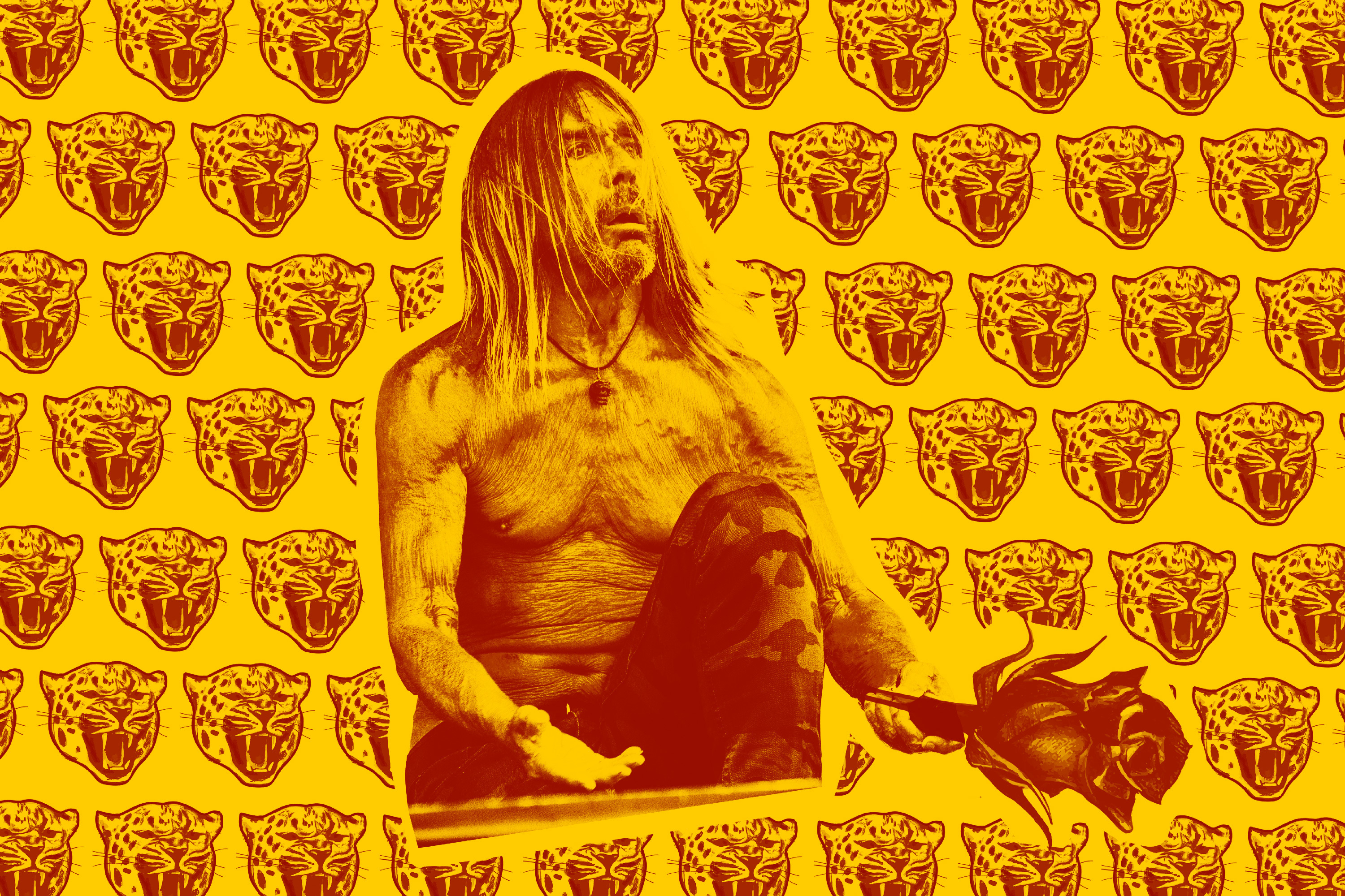 "Iggy Pop: ""I was out to kill bears right from the beginning…"""