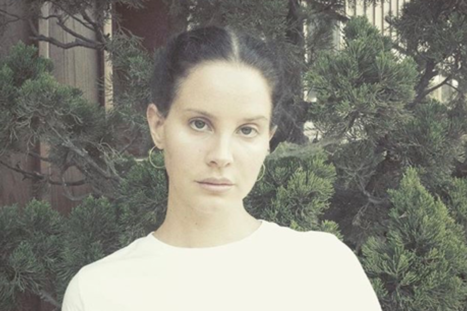 Lana Del Rey shares new song