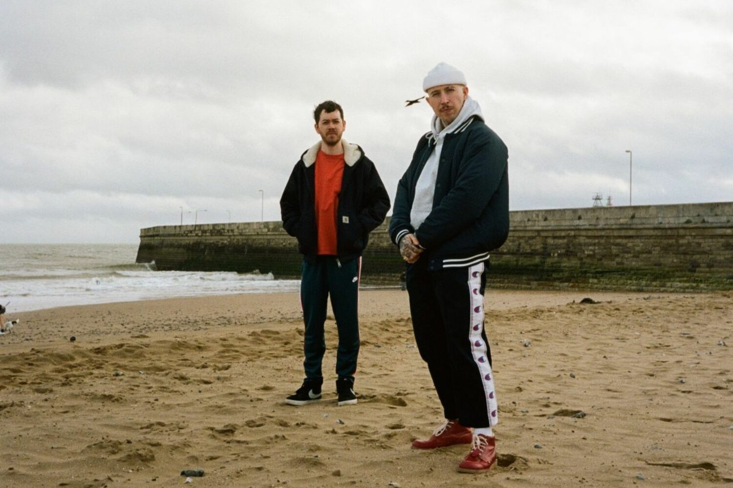 LARRY PINK THE HUMAN share new track 'PURPOSE BUILT'