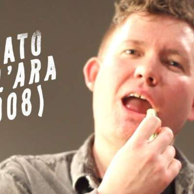 Los Campesinos! document their US tour in 'Renato Dall'Ara (2008)' video
