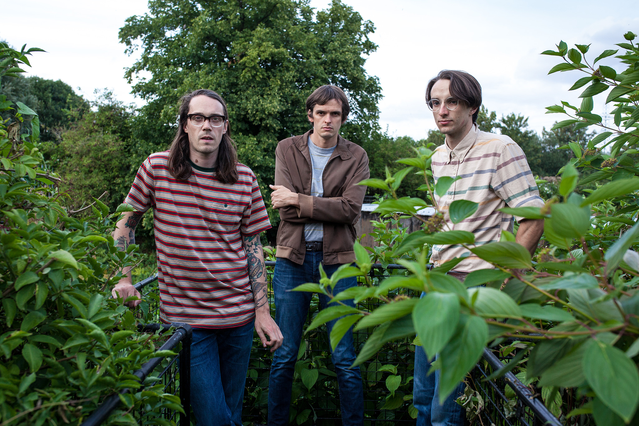 Track by track: Mazes - Wooden Aquarium