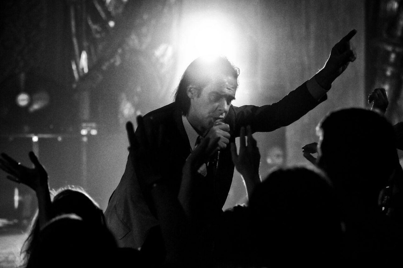 Nick Cave confirms new album 'CARNAGE'