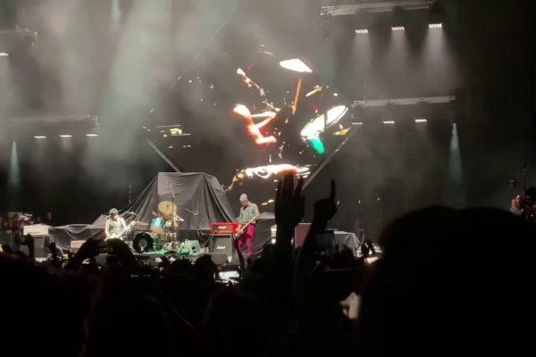 Watch Nirvana members reunite at Cal Jam festival