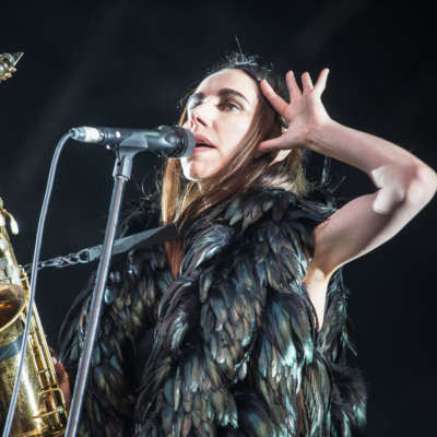 PJ Harvey, Future Islands and Ryan Adams are headlining Green Man 2017