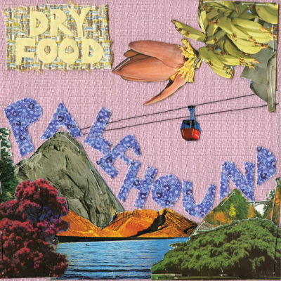 Palehound - Dry Food
