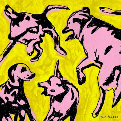 Paul Jacobs - Pink Dogs On The Green Grass