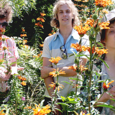 Pond share new Kevin Parker-produced single 'Sweep Me Off My Feet'