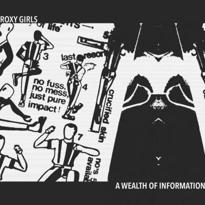 Roxy Girls - A Wealth Of Information