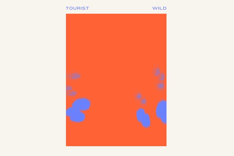 Tourist - Wild