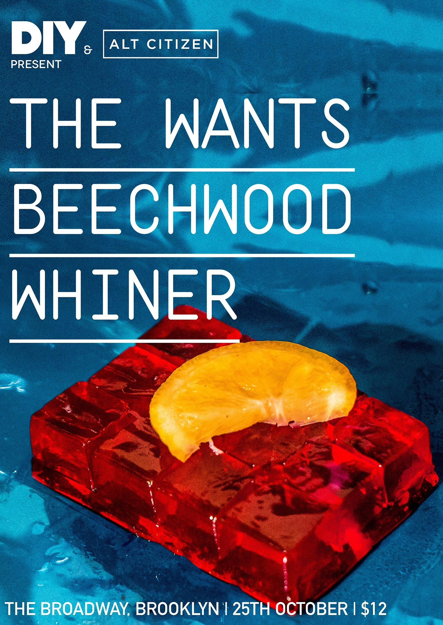 The Wants, Beechwood & Whiner for next DIY & Alt Citizen show