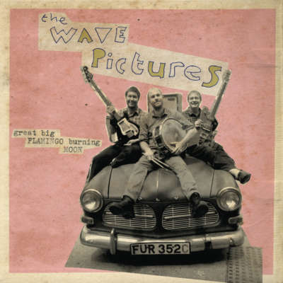 The Wave Pictures - Great Big Flamingo Burning Moon
